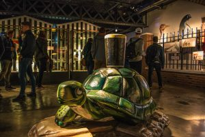 Guinness Turtle Ad
